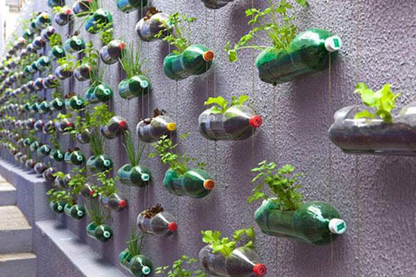 Tái chế chai nhựa thành vườn cây
