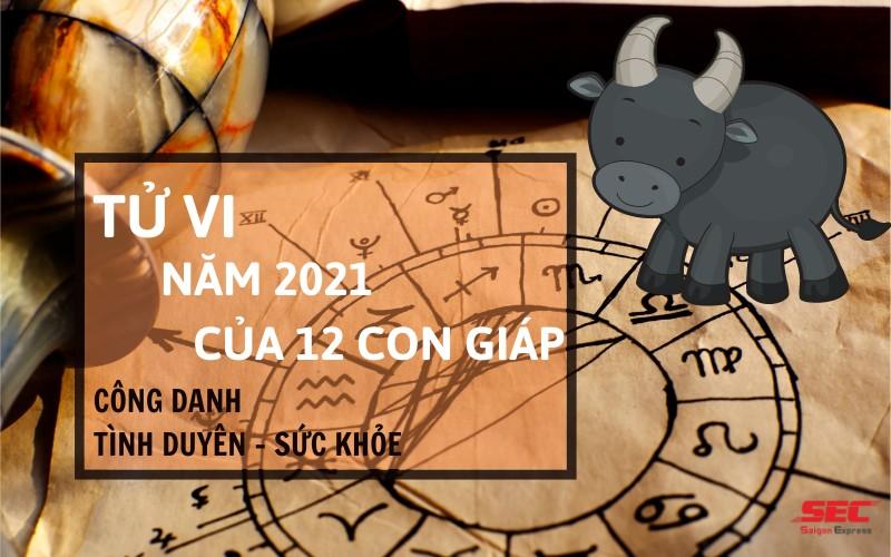 tu-vi-nam-2021-cua-12-con-giap-1